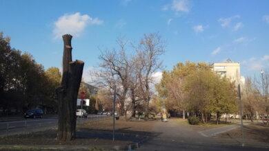 Photo of COVID на Николаевщине: 464 новых больных и 2 смерти за сутки