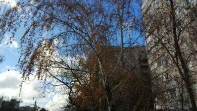 Час від часу - мряка та сніжні зерна... Прогноз погоди для миколаївців на вихідні | Корабелов.ИНФО image 2
