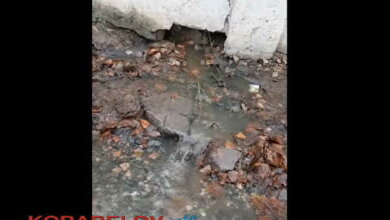 сброс нечистот от Николаевского областного сборного пункта