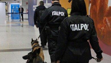 В аэропорту Рима собаки будут выявлять коронавирус по запаху | Корабелов.ИНФО