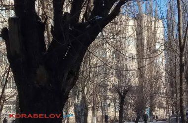 Николаевская горбольница №5, январь-2021