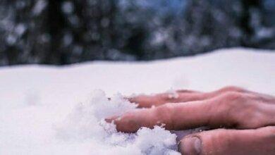 На территории дачного товарищества в Лупарево насмерть замерз человек | Корабелов.ИНФО