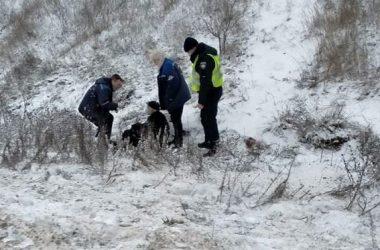 Патрульные в Витовском районе спасли пожилого мужчину,  который лежал в снегу и не мог подняться   Корабелов.ИНФО