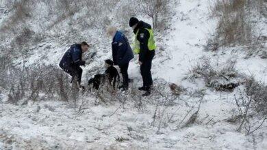 Патрульные в Витовском районе спасли пожилого мужчину,  который лежал в снегу и не мог подняться | Корабелов.ИНФО