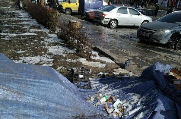 """""""Мы в этом дерьме постоянно"""", - жителей Корабельного района возмущают мусор и бродячие собаки (видео)   Корабелов.ИНФО image 1"""