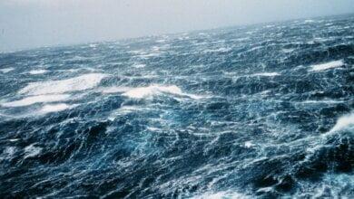В Украине ожидаются сильные порывы ветра - на Черном море волны поднимутся до 5 метров | Корабелов.ИНФО