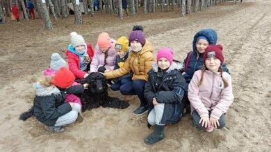 У Балабанівському лісі відбулися змагання зі спортивного орієнтування серед учнів   Корабелов.ИНФО image 5
