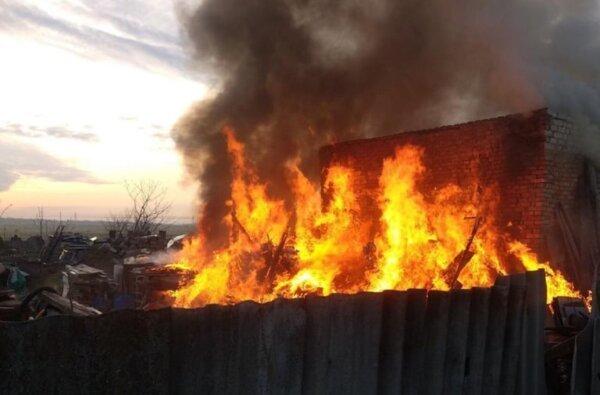 В Корабельном районе горели камыш и хозпостройка | Корабелов.ИНФО