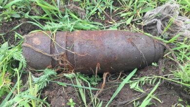 В трёх метрах от тропинки: в Корабельном районе найден крупный снаряд | Корабелов.ИНФО