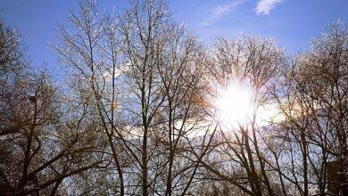 На Николаевщине на выходных температура поднимется до +16 градусов, но ночью вероятны заморозки | Корабелов.ИНФО