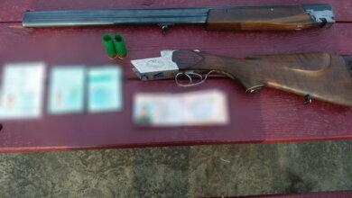 Мужчина застрелил собак, напавших на его дочь   Корабелов.ИНФО image 2