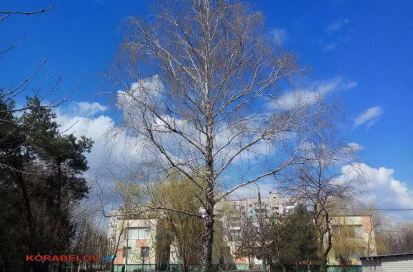 Погода в Николаеве на сегодня: без осадков и до +15º   Корабелов.ИНФО