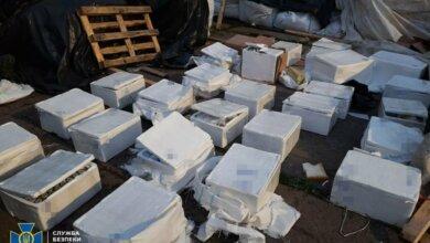 У Миколаєві СБУ викрила контрабанду наркомістких лікарських засобів | Корабелов.ИНФО image 4