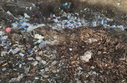 """""""Слабоумие этих особей поражает"""": опубликованы фото жителей Корабельного района, устроивших мусорную свалку   Корабелов.ИНФО image 10"""