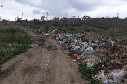 """""""Слабоумие этих особей поражает"""": опубликованы фото жителей Корабельного района, устроивших мусорную свалку   Корабелов.ИНФО image 11"""