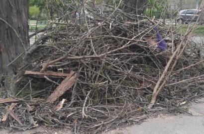 Обрезая деревья, подрядчик разрушил тротуарную плитку и асфальт в Корабельном районе (Видео) | Корабелов.ИНФО image 1