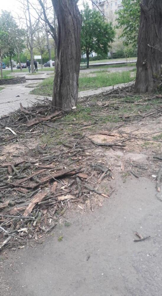 Обрезая деревья, подрядчик разрушил тротуарную плитку и асфальт в Корабельном районе (Видео) | Корабелов.ИНФО image 2