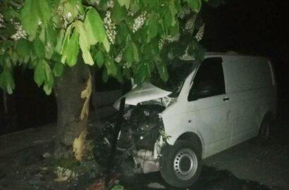 На Николаевщине минивэн врезался в дерево – водитель погиб | Корабелов.ИНФО