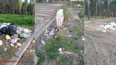 """мусор на пляже """"Чайка"""" и в Балабановском лесу"""