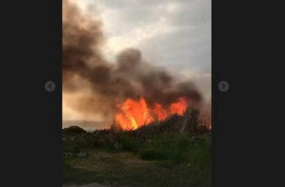 Пожар вблизи жилого сектора в Корабельном районе (Видео) | Корабелов.ИНФО image 1