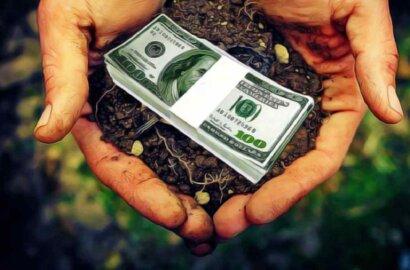 Открытие рынка земли в Украине