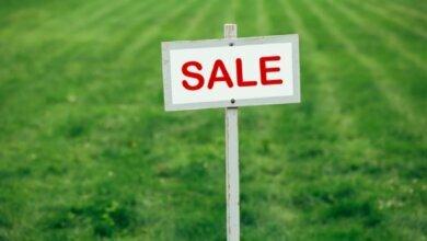 Нардепы одобрили продажу земли на онлайн-аукционах | Корабелов.ИНФО