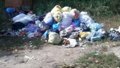 мусор по Самойловича, 24